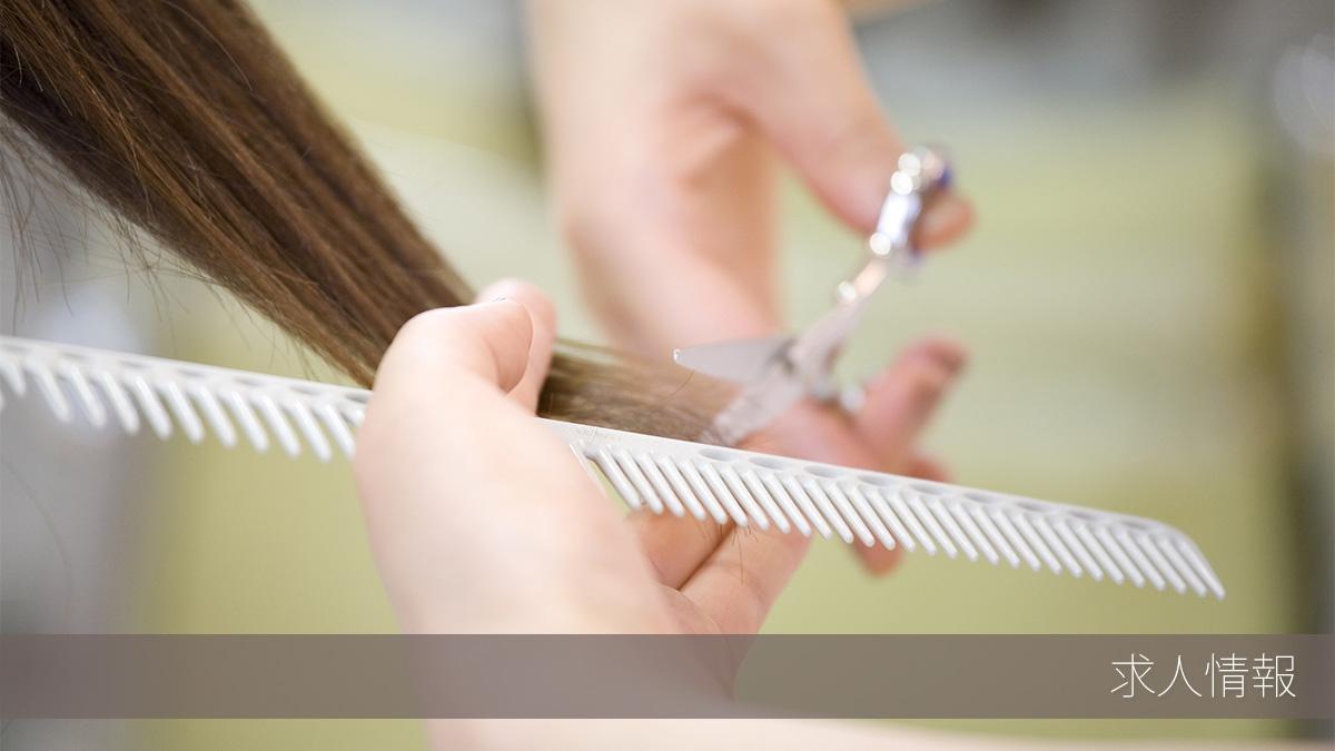 厚木市の美容師求人情報